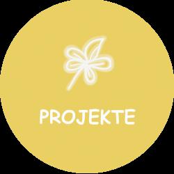 Icon_Projekte_800x800px